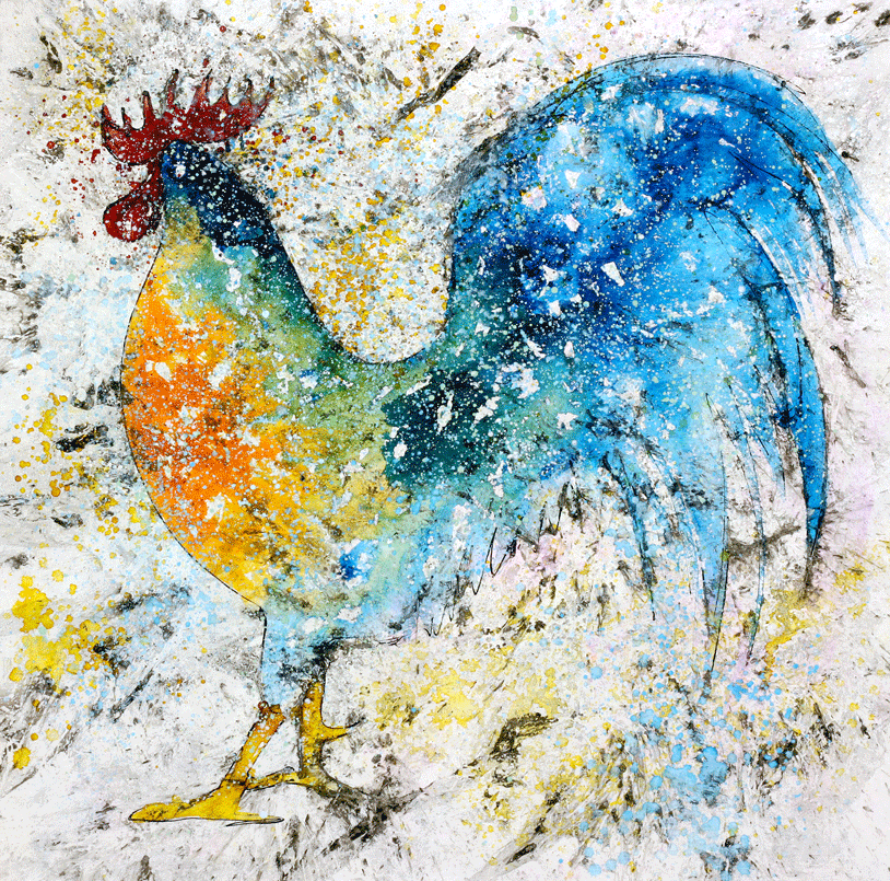 Gallo azul
